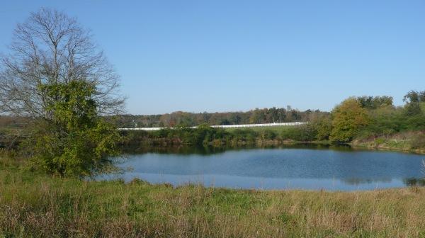 Scenic oOange County