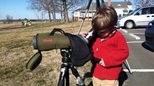 Noah scope